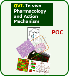 QVI. In vivo Pharmacology and Action Mechanism